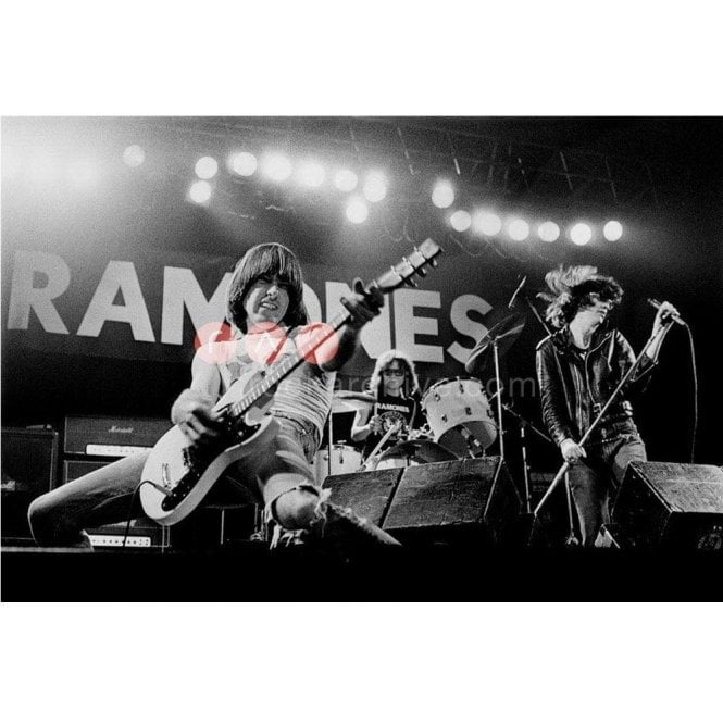 Rock Archive Limited Edition Rock Archive Print - The Ramones